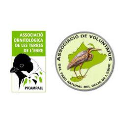 PROJECTE AMFIBIA'T Jornada per restaurar una antiga bassa d'argila